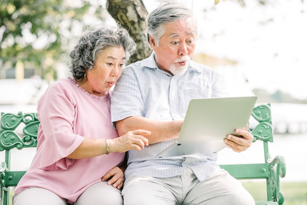 Par asiático, sentimento, surpreendido, usando computador portátil