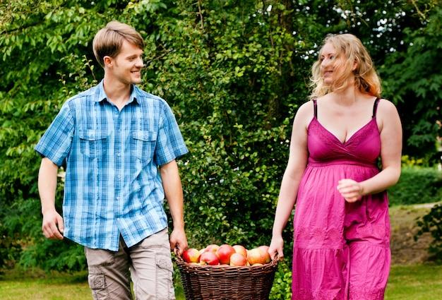 Par, cesta levando, com, maçãs