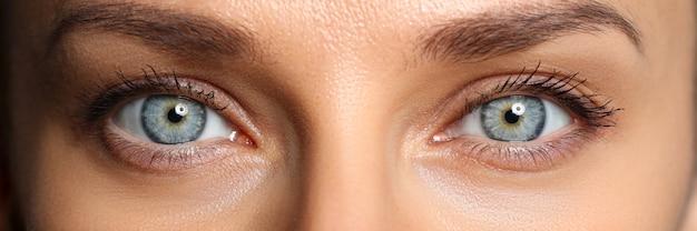Par de lindos olhos femininos de verdes e azuis