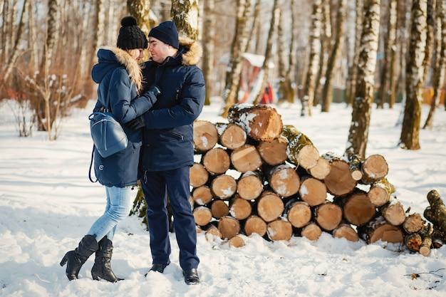 Par, em, um, inverno, parque