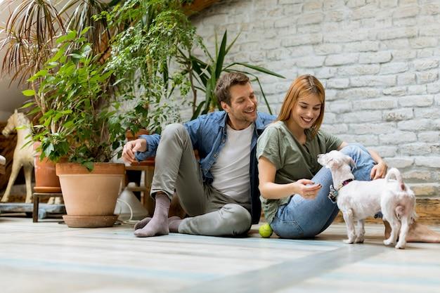 Par jovem, sentando, em, rústico, sala de estar, chão, e, tocando, com, cão