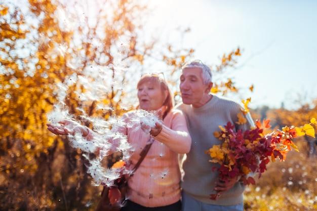 Par velho, andar, soprando, macio, sementes, e, tendo divertimento, em, outono, floresta