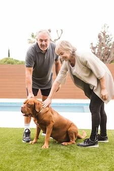 Par velho, com, cão, em, jardim