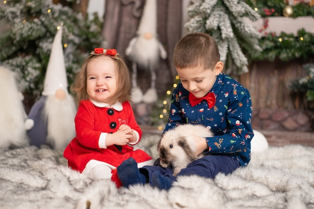 Para as crianças, o papai noel deu um coelho fofo no natal