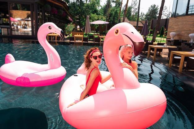 Para nadar. mulheres jovens encantadas usando um flamingo de ar enquanto nadam na piscina