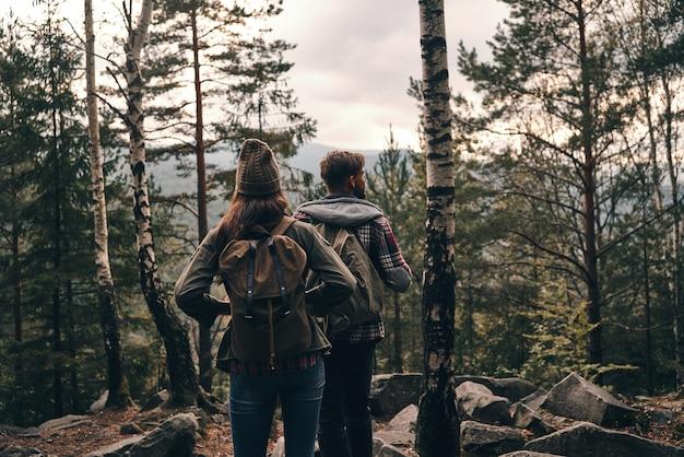 Para onde ir a seguir? vista traseira de um jovem casal em pé e olhando para longe durante uma caminhada na floresta