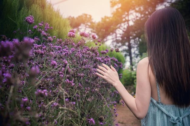Para trás da mulher que toca na flor roxa do verbena na manhã.