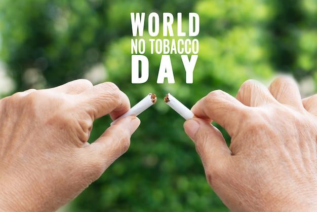 Parar de fumar, sem dia de tabaco, as mãos da mãe quebrando o cigarro