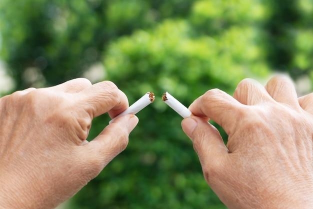 Pare de fumar, sem dia de fumo, mãos da mãe quebrando o cigarro Foto Premium