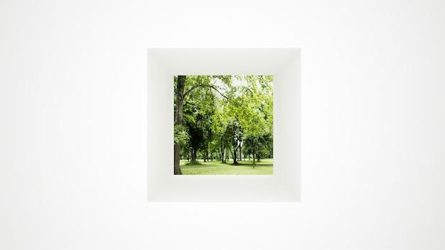 Parede branca com gramado de vista de janela e floresta