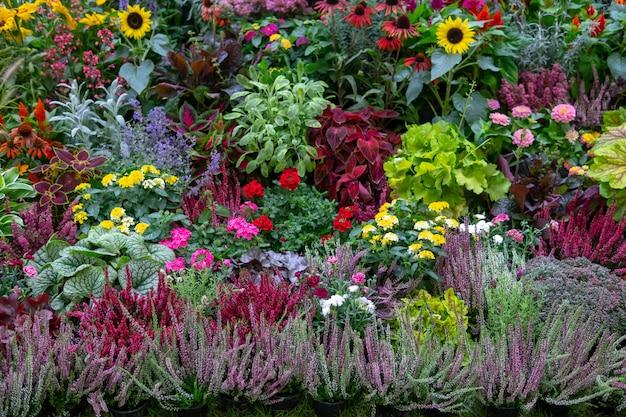 Parede de flores e ervas.