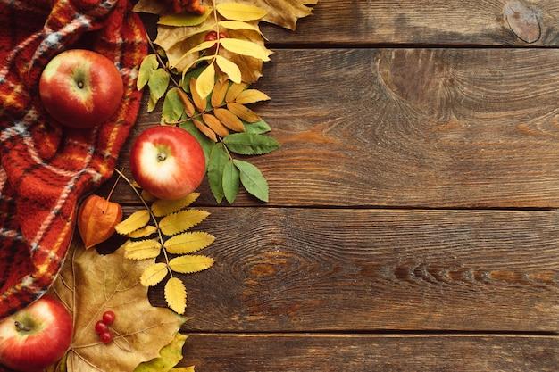 Parede de folhas e frutos de queda. conceito de colheita de outono