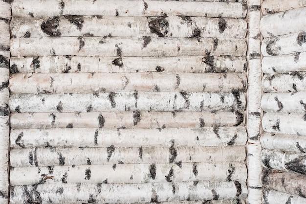 Parede de madeira com troncos de bétula. fundo manchado de árvores. foto de alta qualidade