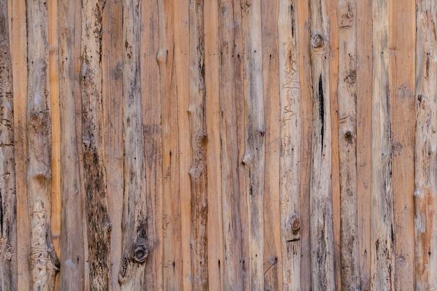 Parede de madeira velha do conceito de design de natureza de casca de árvore