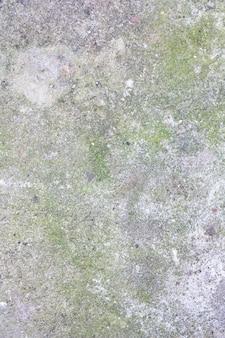 Parede de parede de concreto velho cinza com mofo e musgo. textura de pedra velha