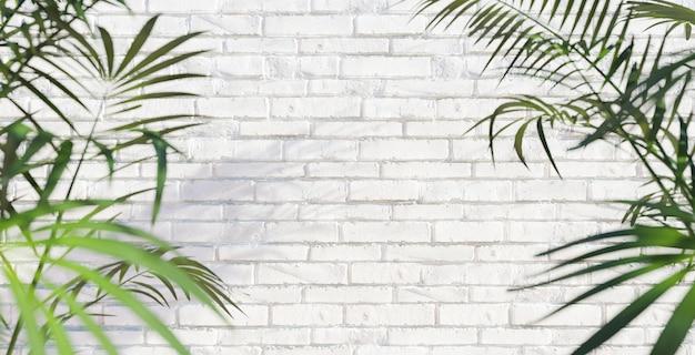 Parede de tijolos brancos com fundo de verão em folha de palmeira