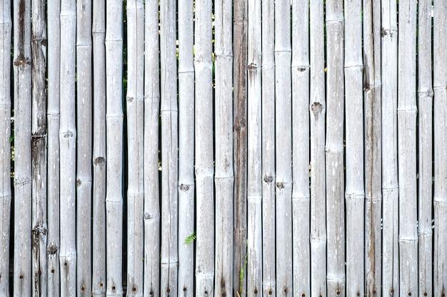 Parede e textura de bambu da cerca.