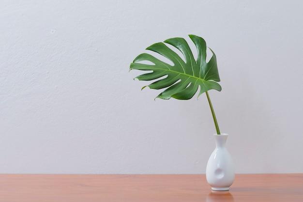 Parede em branco com folha monstera em vaso, maquete de planta interna