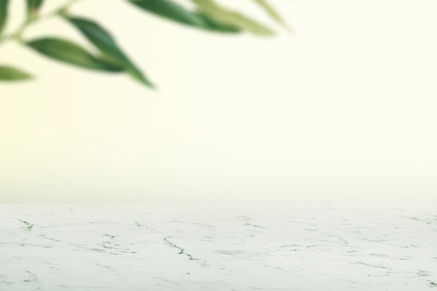 Parede lisa com folhas e fundo de produto de piso de mármore branco