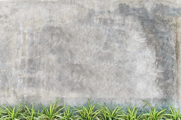 Parede vazia de loja de concreto com planta verde na parte inferior