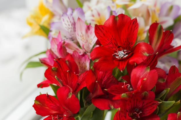 Pares de casamento e de aneis de noivado na flor vermelha do alstroemeria.