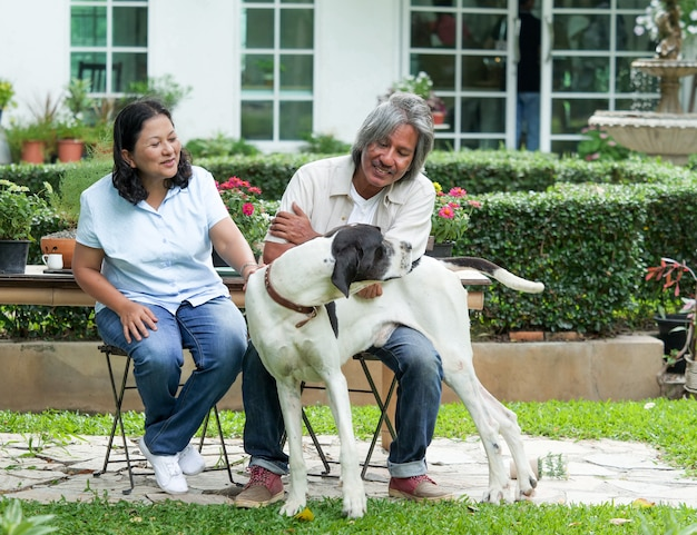 Pares superiores que jogam com o cão grande no jardim home.