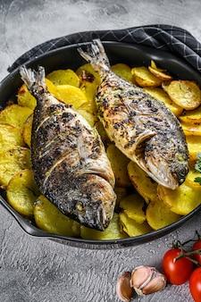 Pargo grelhado peixe com batatas em uma panela. fundo cinza. vista do topo.