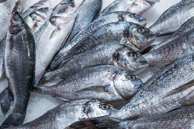 Pargo peixe no gelo no mercado