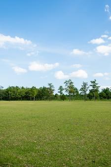 Parque com campo de grama verde