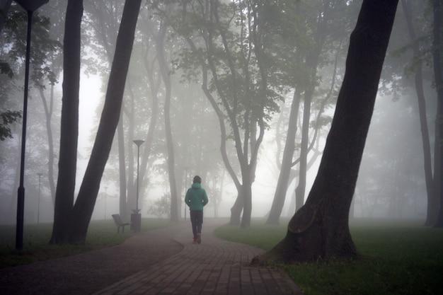 Parque da cidade na manhã de nevoeiro - silueta de pessoa no parque de nevoeiro pela manhã. controle de ambiente limpo.