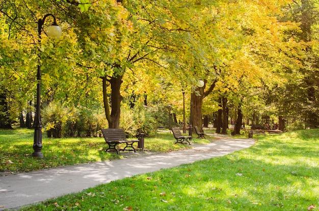 Parque da cidade no outono paisagem de outono lindo parque de outono com tempo ensolarado