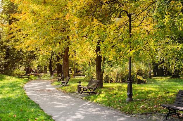 Parque da cidade no outono paisagem de outono lindo parque de outono com tempo ensolarado Foto Premium