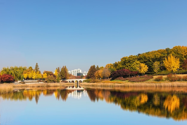 Parque da temporada de outono em seul, coreia do sul.