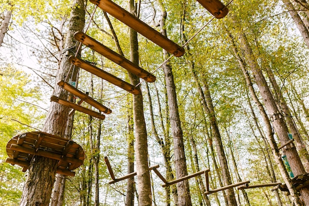 Parque de escalada no alto das árvores