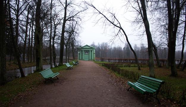 Parque de manhã de outono com neblina. parque sombrio. parque enevoado.
