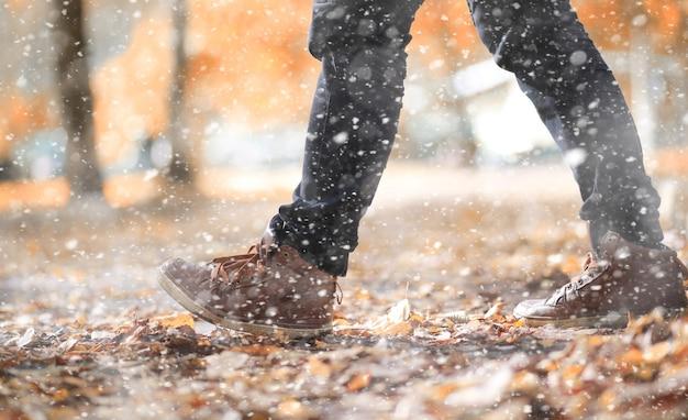 Parque de outono nos dias da primeira neve