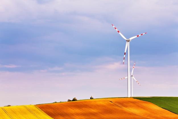 Parque de turbinas eólicas gerando eletricidade.