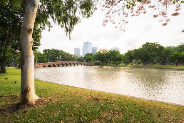 Parque do lago e paisagem urbana