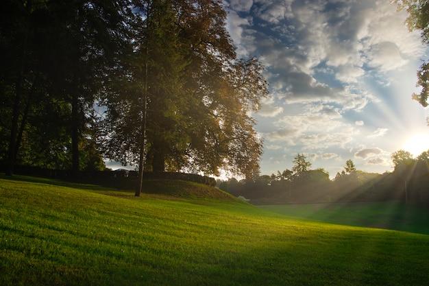 Parque e área de lazer na cidade, campo verde e árvores com nascer do sol matinal