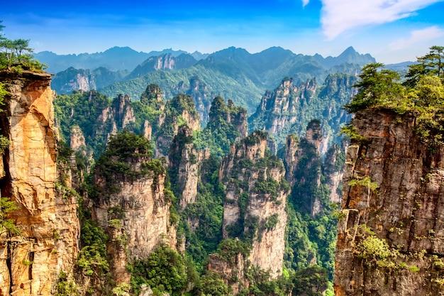 Parque florestal nacional de zhangjiajie. montanhas gigantescas de pilar de quartzo, subindo do canyon durante o dia ensolarado de verão. hunan, china.