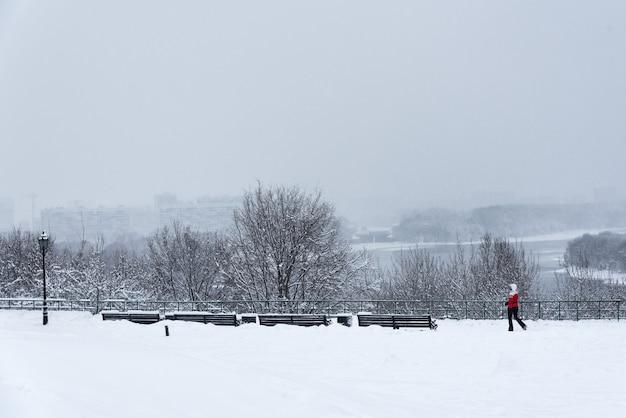 Parque kolomenskoye, árvores de paisagem de inverno na neve