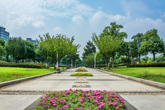 Parque na china