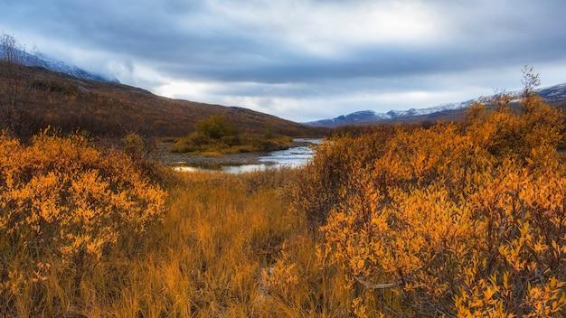 Parque nacional abisko na suécia polar no dia dourado de outono