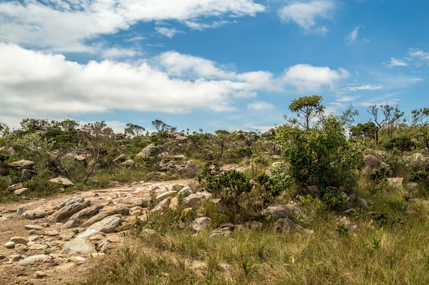 Parque nacional, brasil, serra da canastra