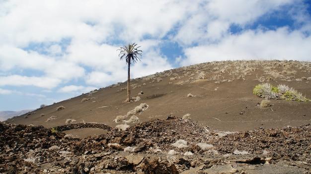 Parque nacional de timanfaya em lanzarote, ilhas canárias, espanha