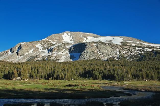 Parque nacional de yosemite na califórnia dos estados unidos