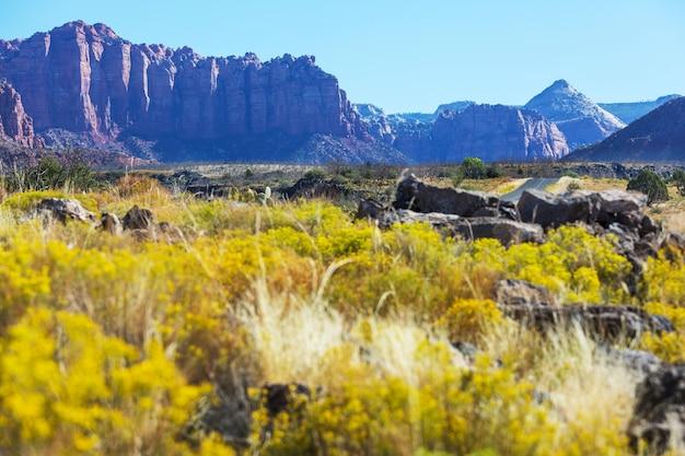 Parque nacional de zion. belas paisagens naturais pouco inspiradas.