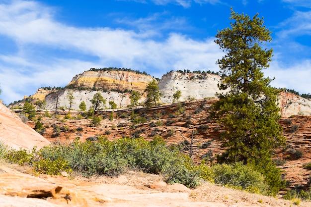 Parque nacional de zion, eua. penhascos pitorescos e multicoloridos criam uma paisagem inesquecível