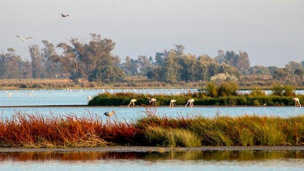 Parque nacional do lago.