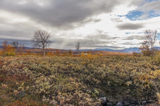 Parque nacional sarek na lapônia, vista da montanha, outono, suécia